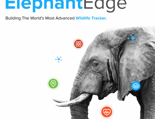 Hackster.io, Smart Parks, and Key Industry Partners to Build World's Most Advanced Elephant Tracker